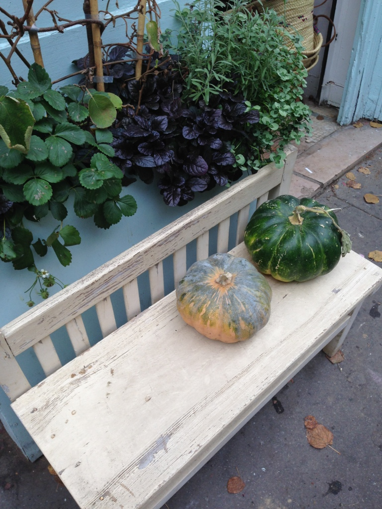 A pair of squash (probably a close as I will get to pumpkins this Halloween) sit in front of a vegetable store in Paris's 11th arrondissement.